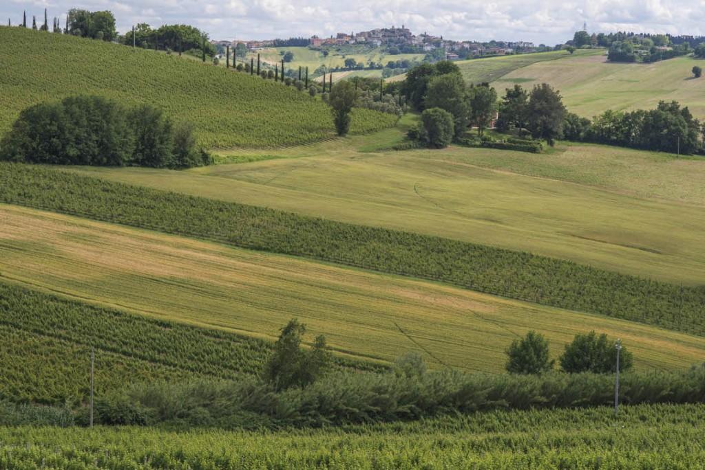Scarpe Italiane lucacalzature,100%made in italy.Campania,marche,Toscana